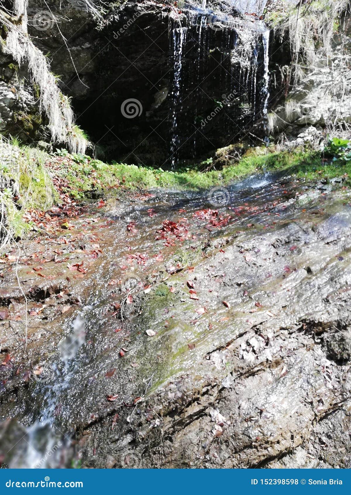 Beau paysage naturel et sauvage de cascade