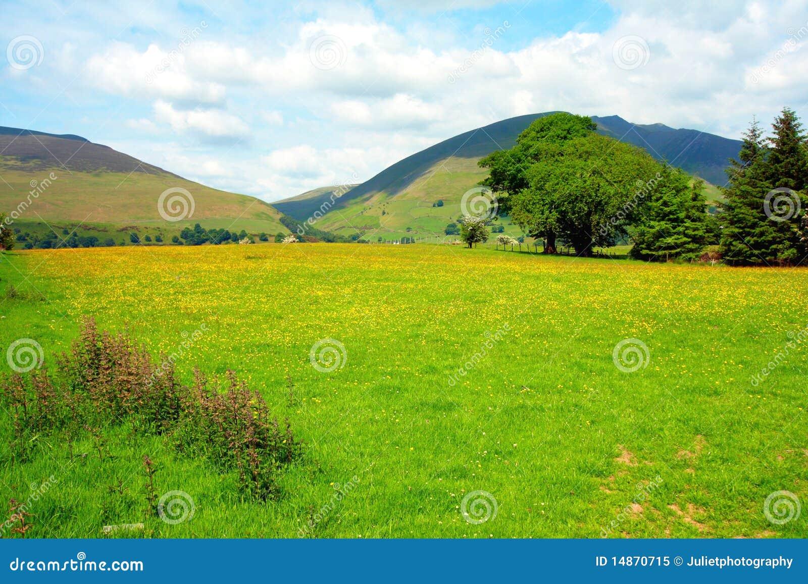 Beau paysage rural, district de lac