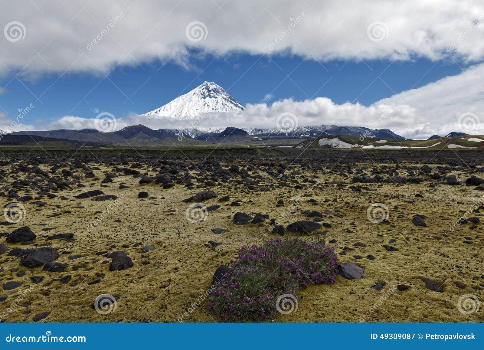 Beau paysage volcanique - vue sur Kamen Volcano et la toundra La Russie, Extrême Orient, péninsule de Kamchatka