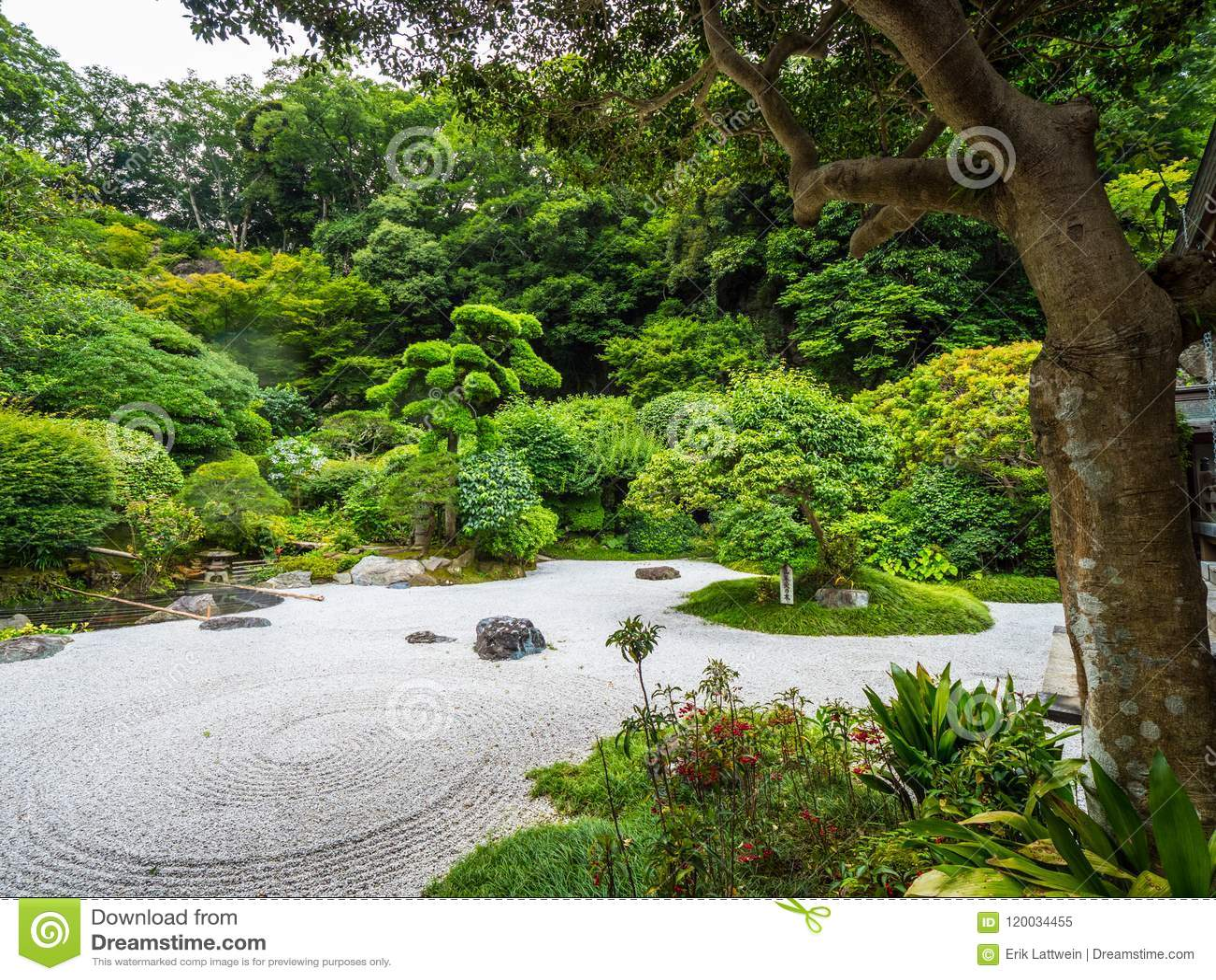 Beau Petit Jardin Japonais à Kamakura - à TOKYO, JAPON - 17 Juin ...