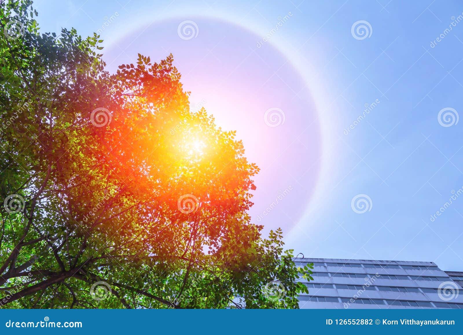 Beau phénomène fantastique de halo du soleil