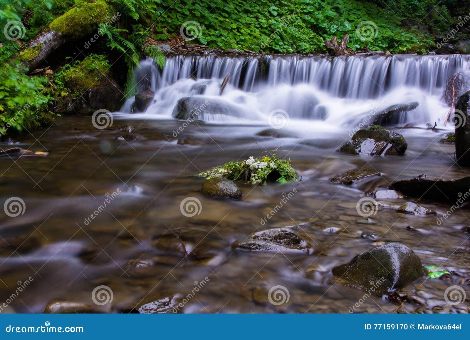 Beau rapid de la rivière de montagnes