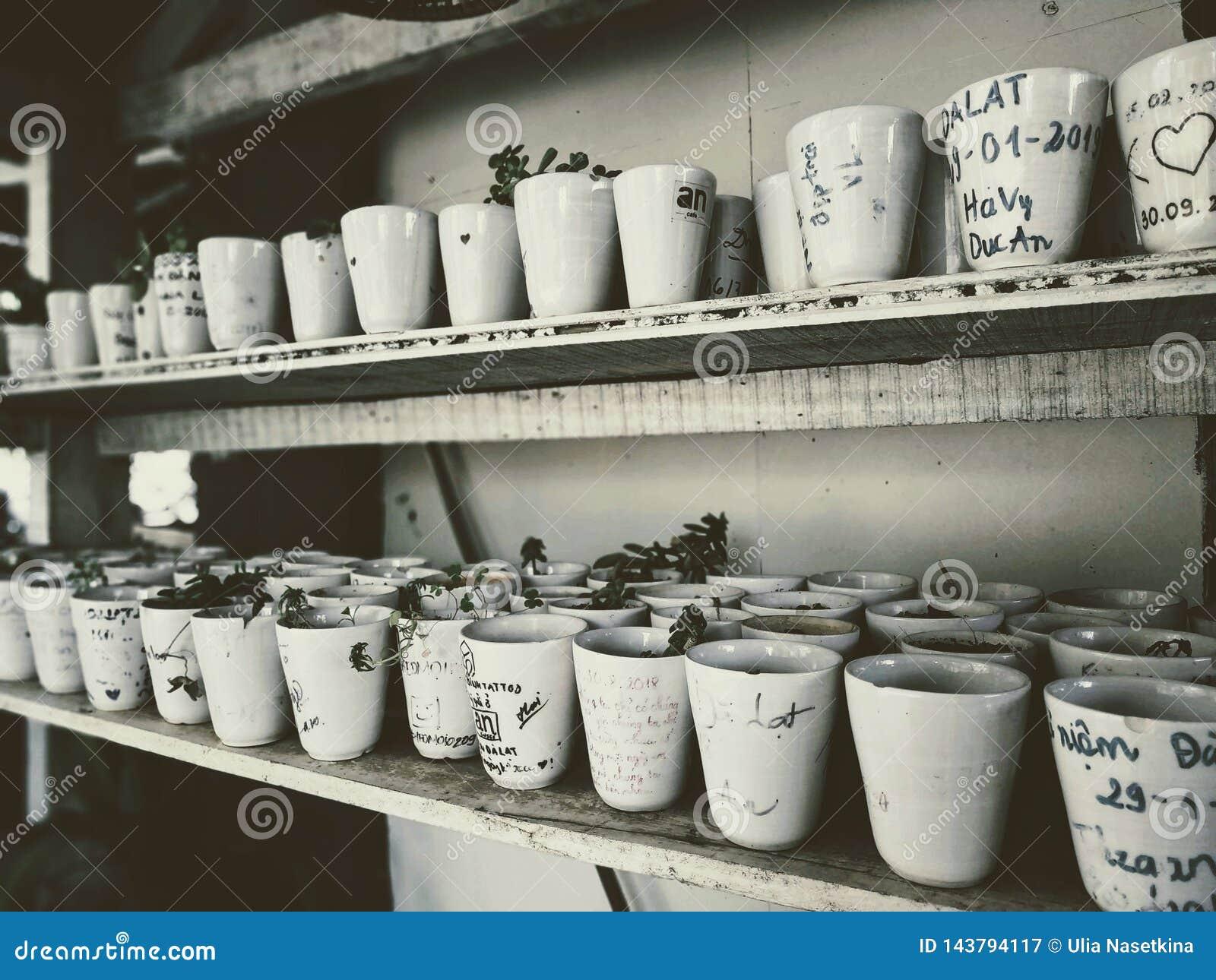 Beaucoup de petits pots sont sur les étagères décoration intérieure dans un café