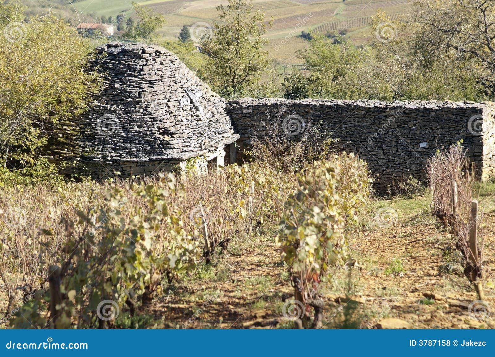 Beaujolais Borie