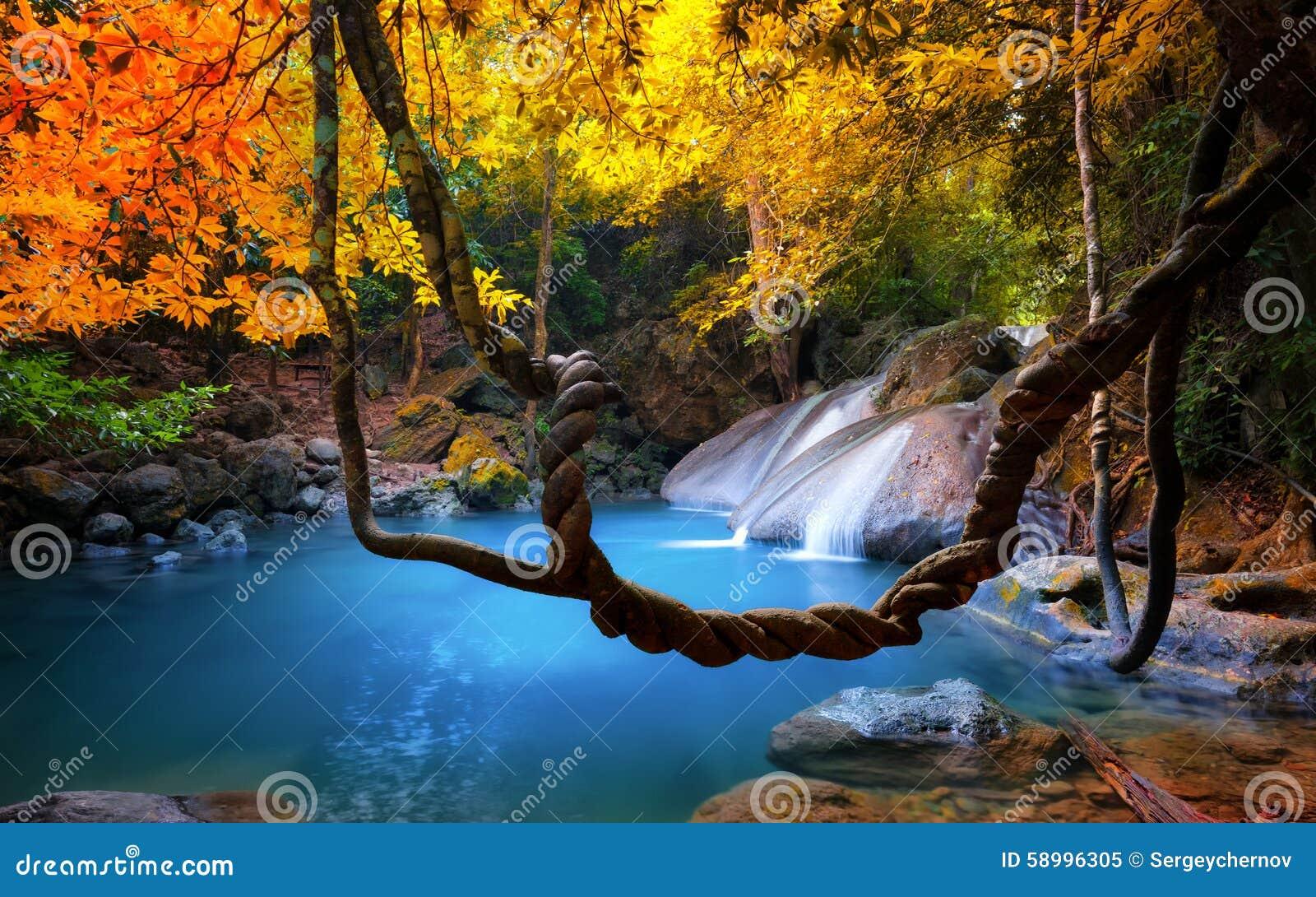 Beauté étonnante de nature asiatique Écoulements tropicaux de cascade