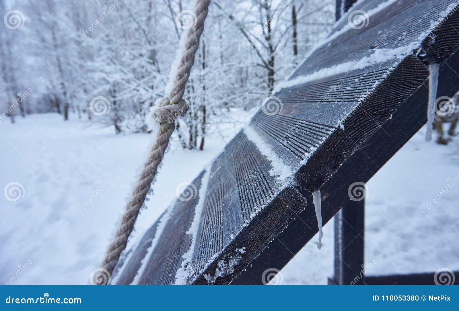 Beauté de l hiver