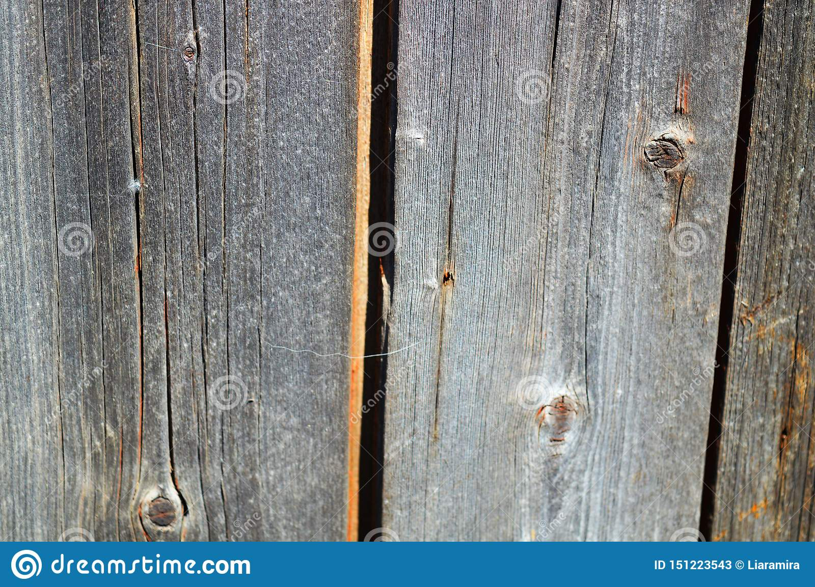 Wooden fence background. Interesting gray texture.