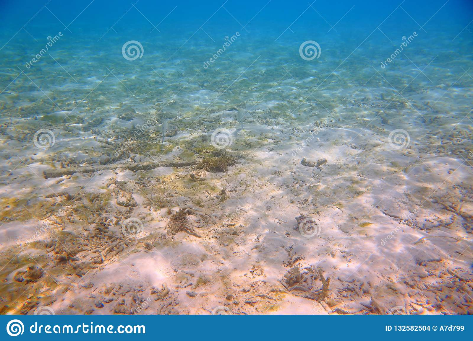 Beautiful abstract background / texture of underwater view of white sand bottom and blue water. Snorkling, Maldives,