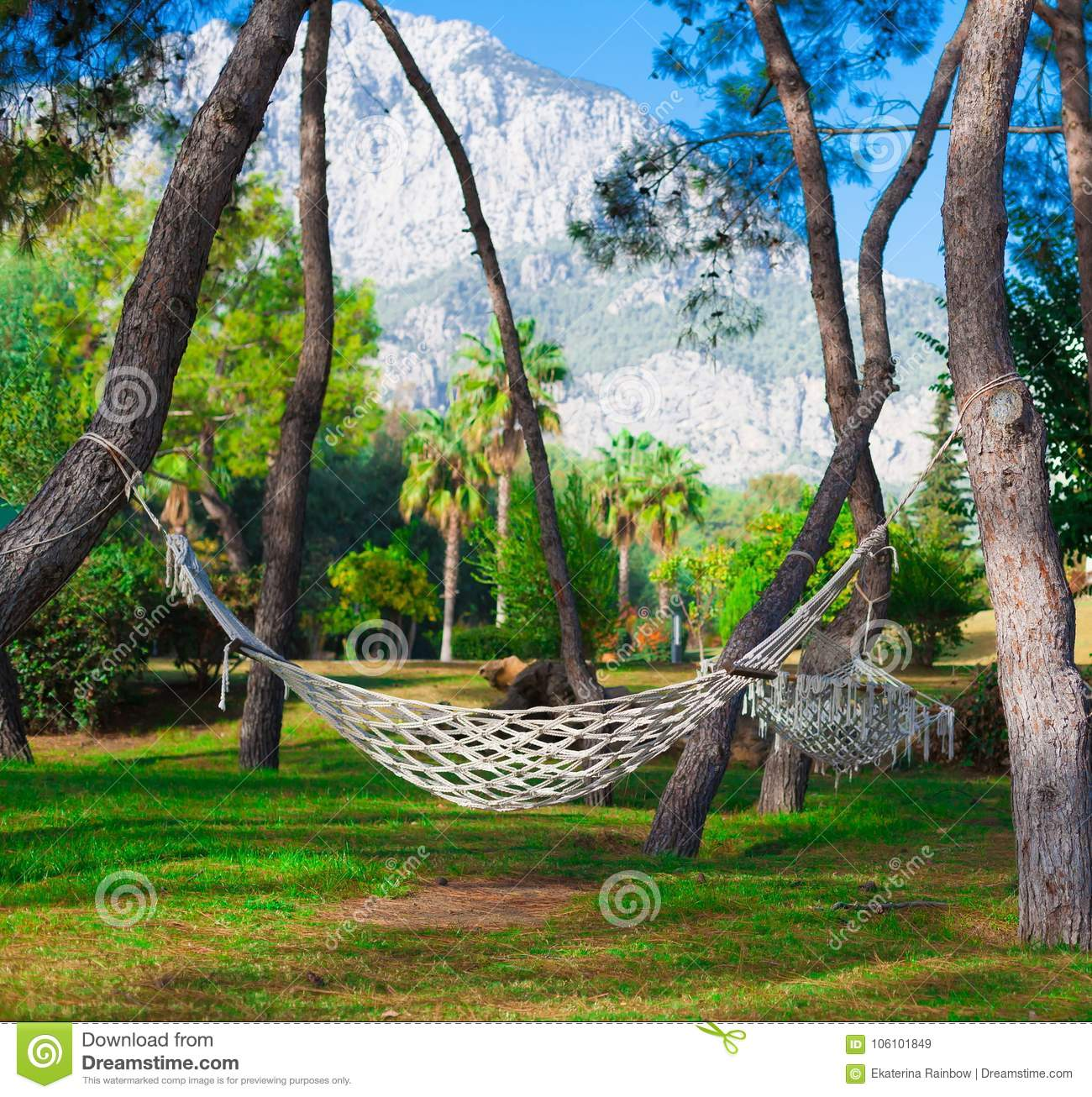 Turkey, Hammock In Tropical Garden Stock Image - Image of idyll ...