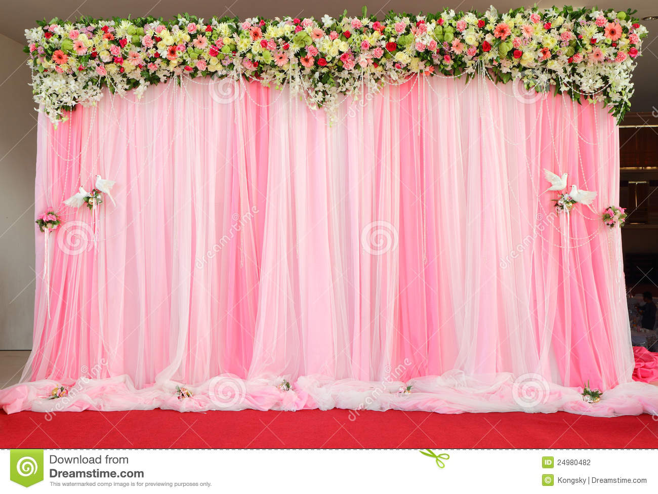 Beautiful Arrangement Backdrop Flowers Stock Photo