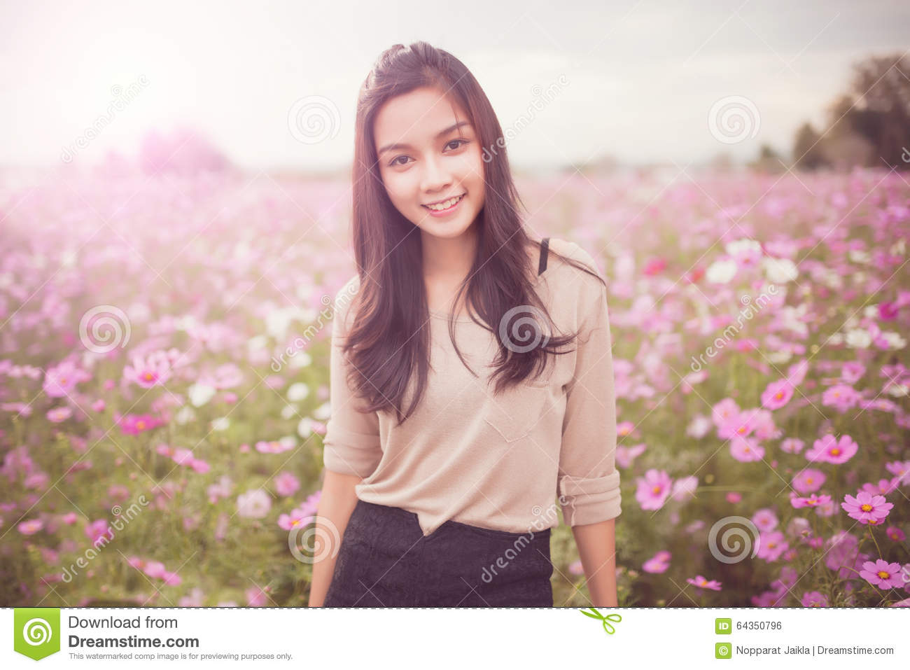 beautiful asian women smiling in pink cosmos flower field stock photo
