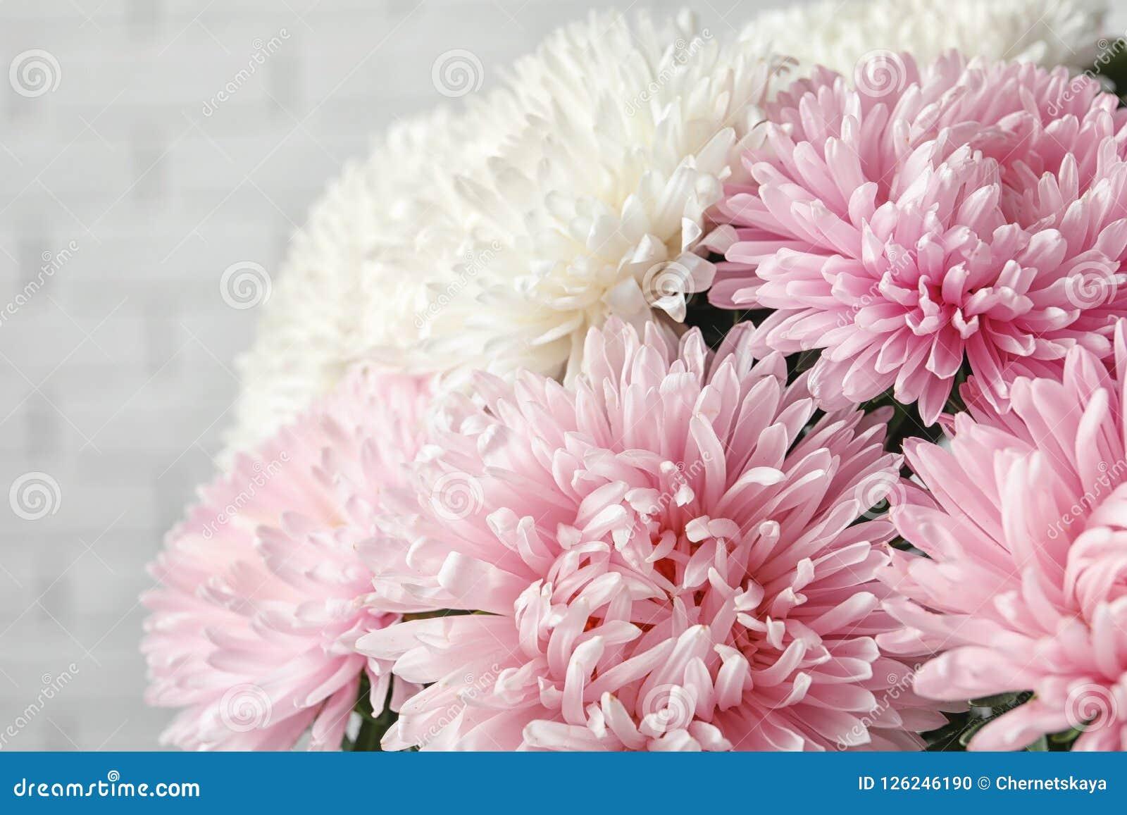 Beautiful aster flower bouquet near brick wall