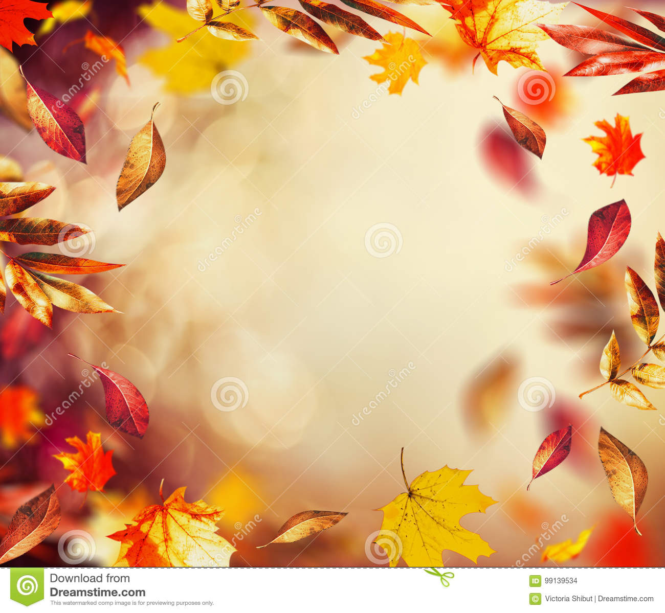 Beautiful autumn background with flying falling colorful leaves and bokeh