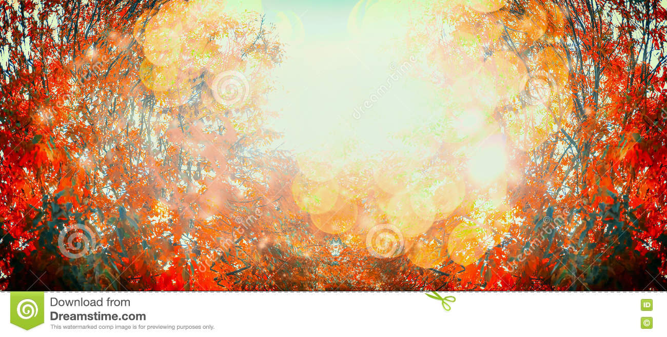 Beautiful autumn day with red fall foliage and sunlight, outdoor nature background, banner