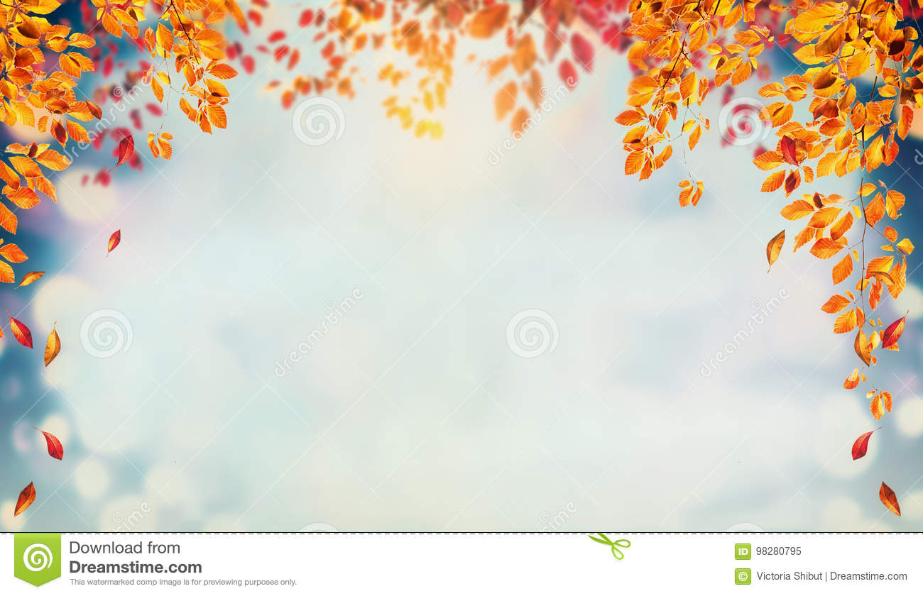 Beautiful autumn foliage background with brunches and falling tree leaves at sky
