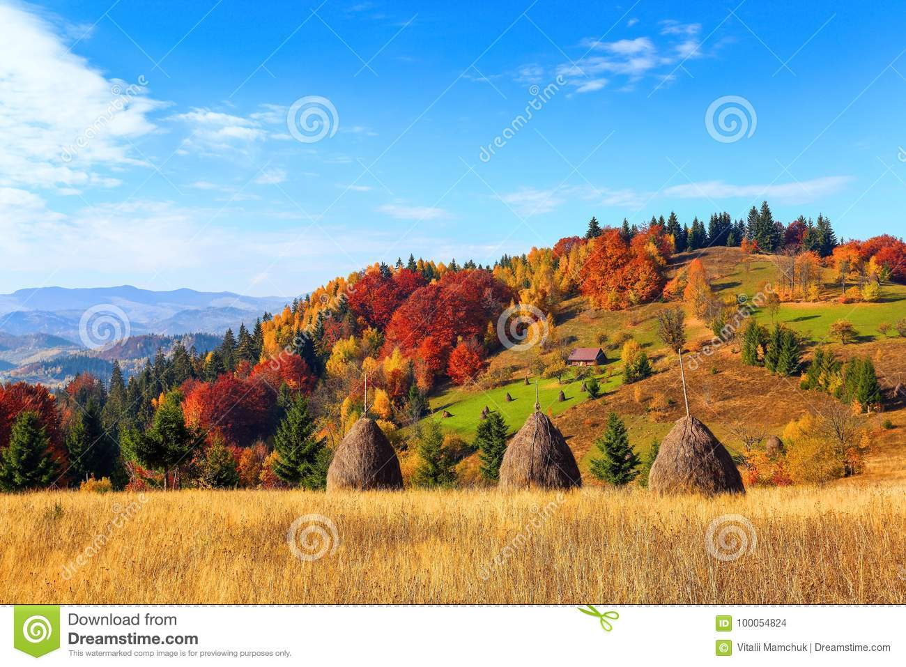 Beautiful autumn landscape with the green fair trees, orange coloured forest, high mountains and blue sky.