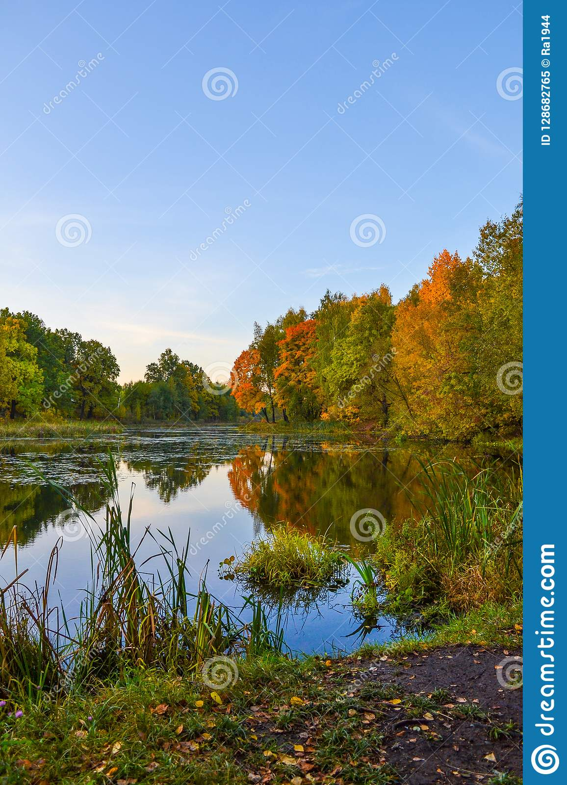 Beautiful autumn landscape. Lake, yellow and red trees by the lake. Reflection in water. Blue sky. Sunny autumn day