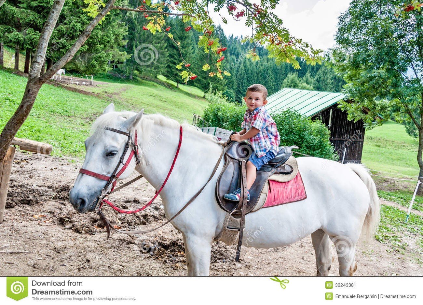 Beautiful Baby Rides A Horse Stock Image Image Of Horizontal Preschool 30243381