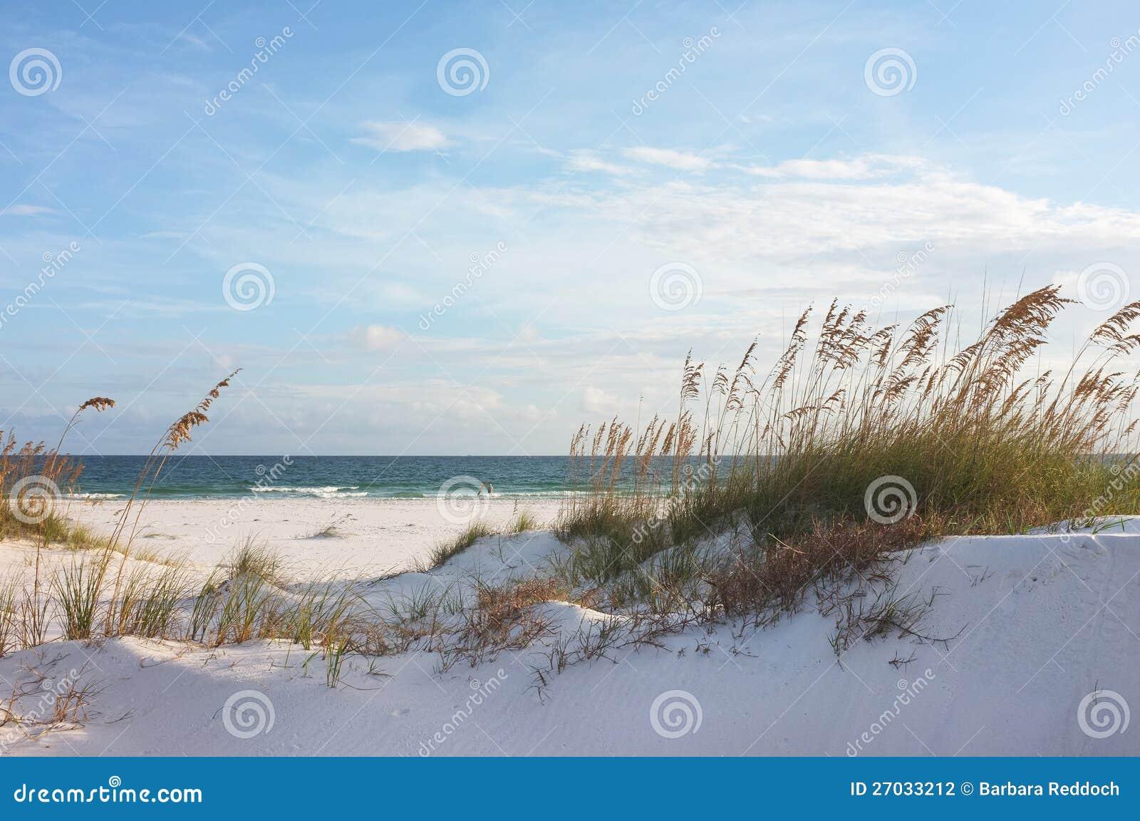 Beach Dunes In Florida Map