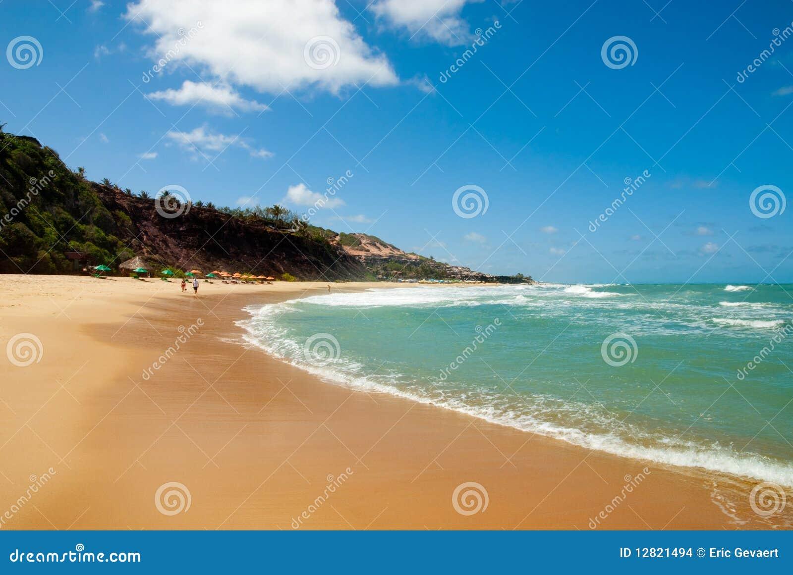 Beautiful beach with palm trees at Praia do Amor