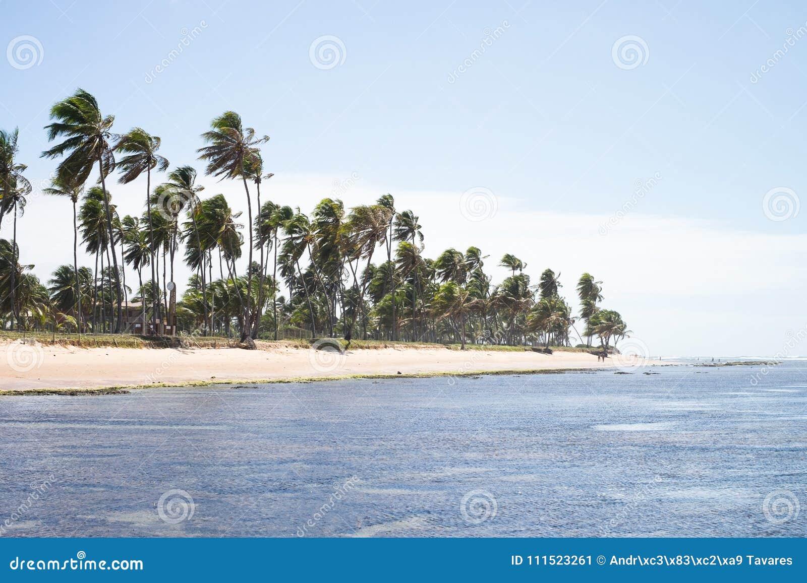 Praia do Forte in Bahia, Brazil