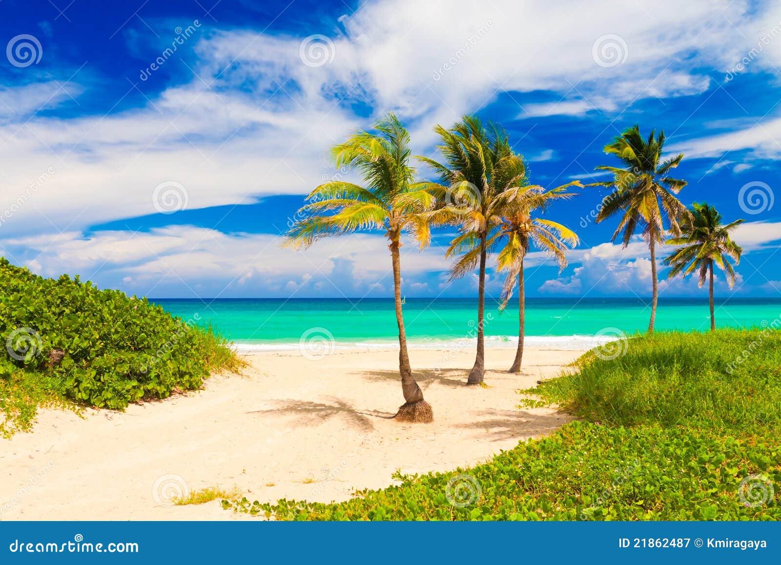 Va Beach Web Design