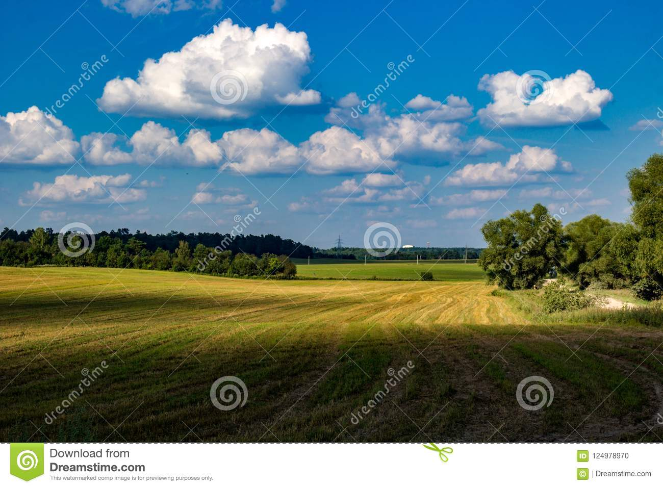 Beautiful beveled agricultural field