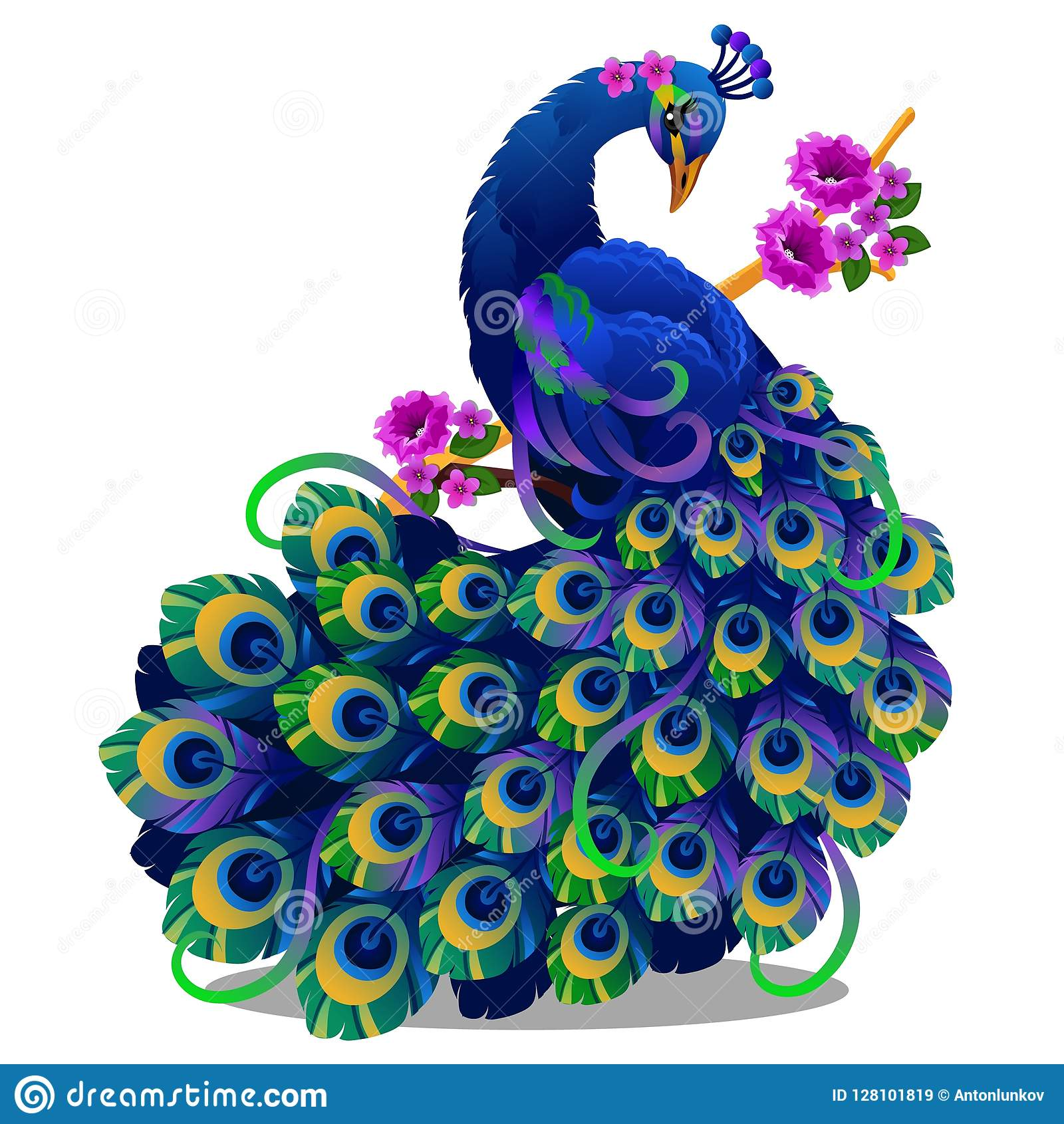 Beautiful bird peacock sitting on a perch with flowers isolated on white background. Vector cartoon close-up