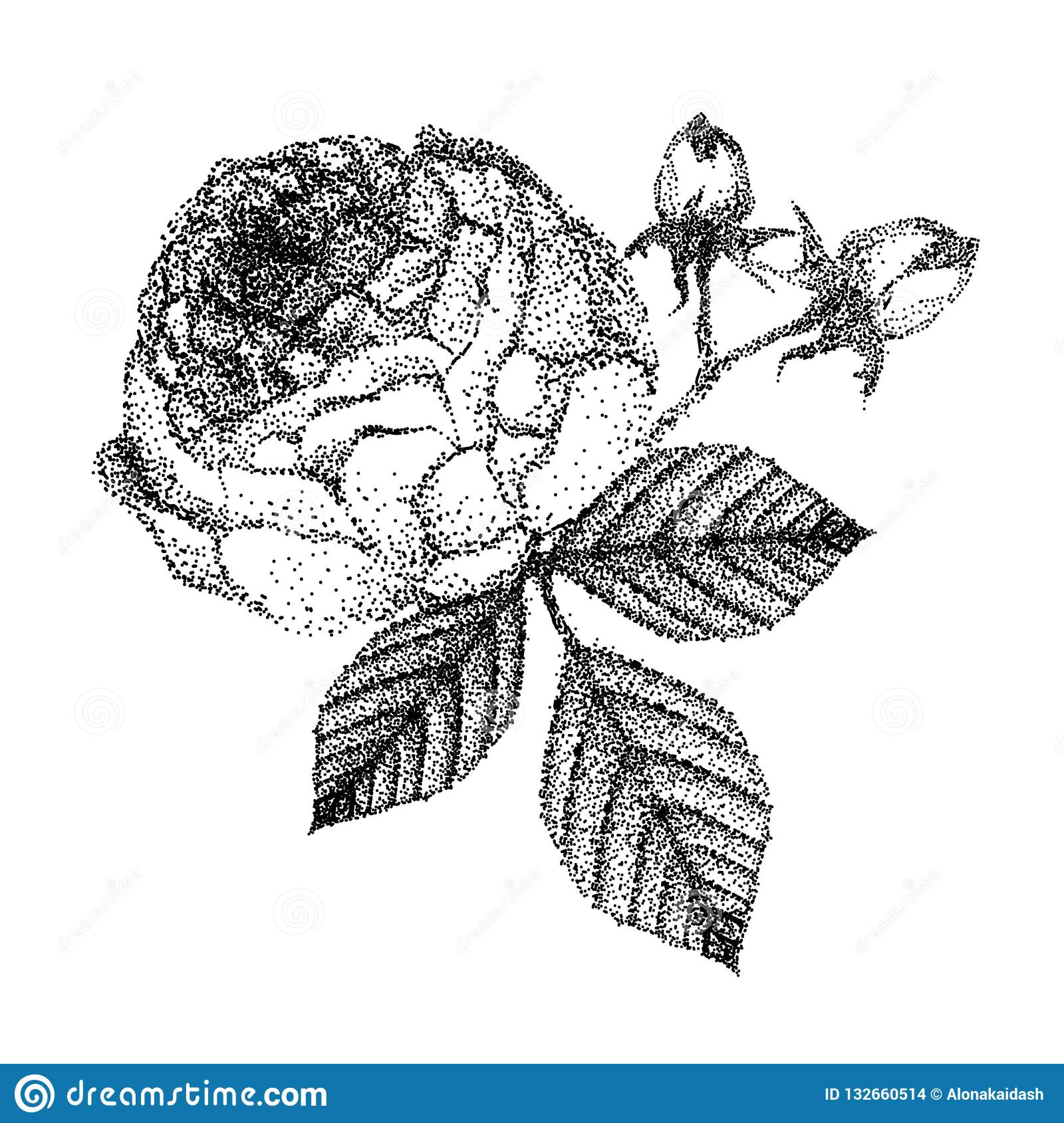Beautiful black and white bouquet rose and leaves.