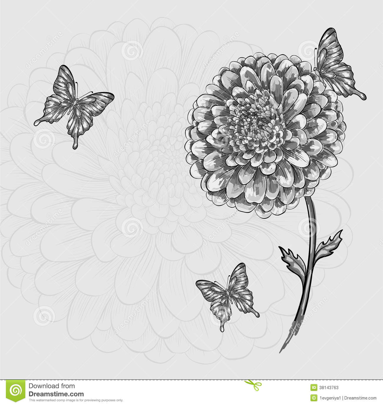 Beautiful Black And White Flower With Butterflies Stock Vector