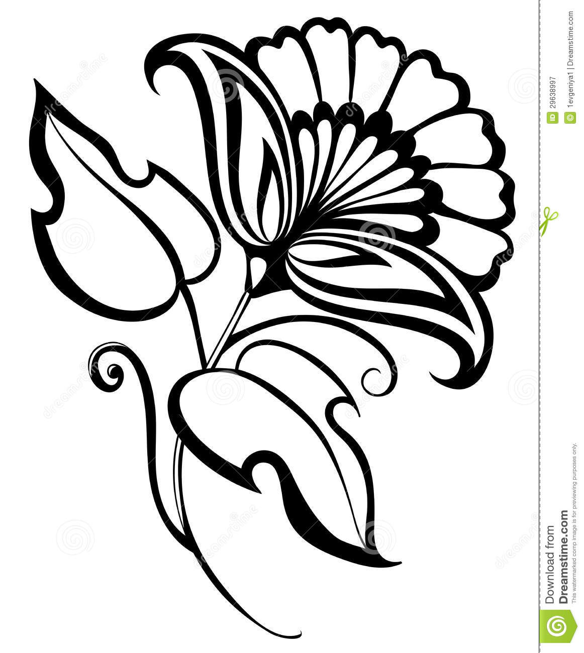 Beautiful Black And White Flower, Hand Drawing. Floral