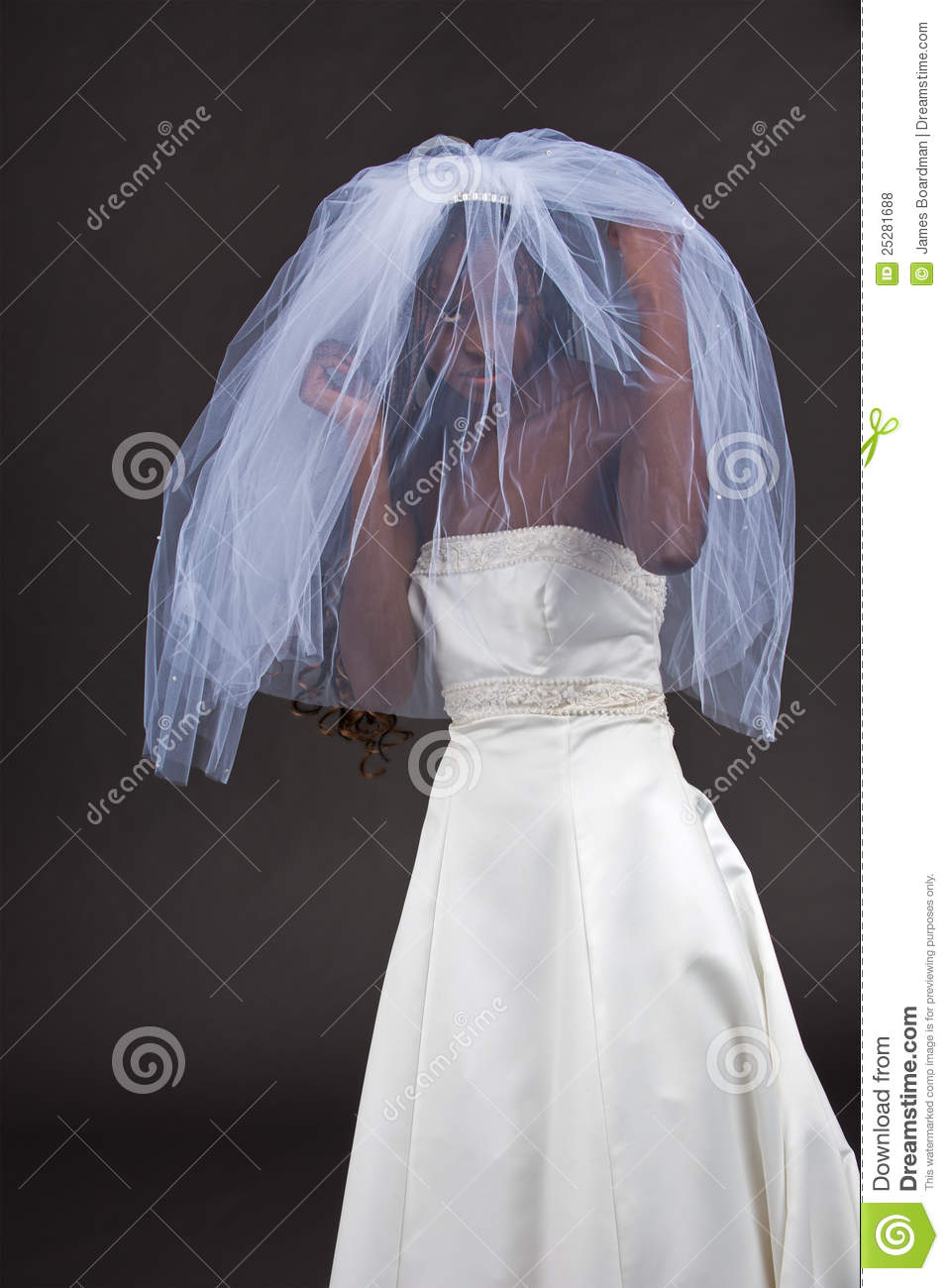 Beautiful black woman in a wedding dress royalty free stock photos royalty free stock photo download beautiful black woman in a wedding dress ombrellifo Image collections