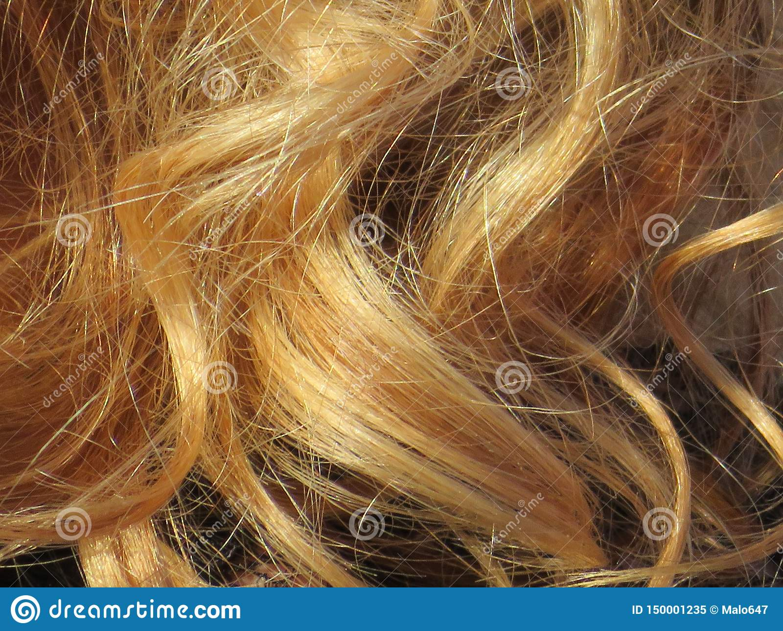 Beautiful blond hair of an intense color and very well groomed