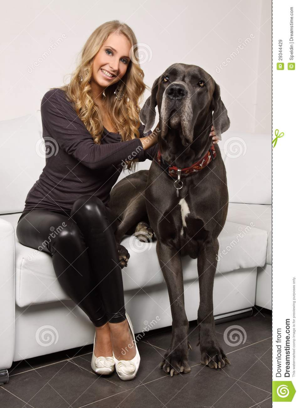 Beautiful Blonde Girl With A Large Dog On The Cou Royalty