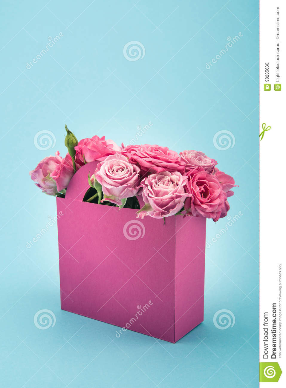Beautiful blooming pink roses in decorative paper bag arranged isolated on blue