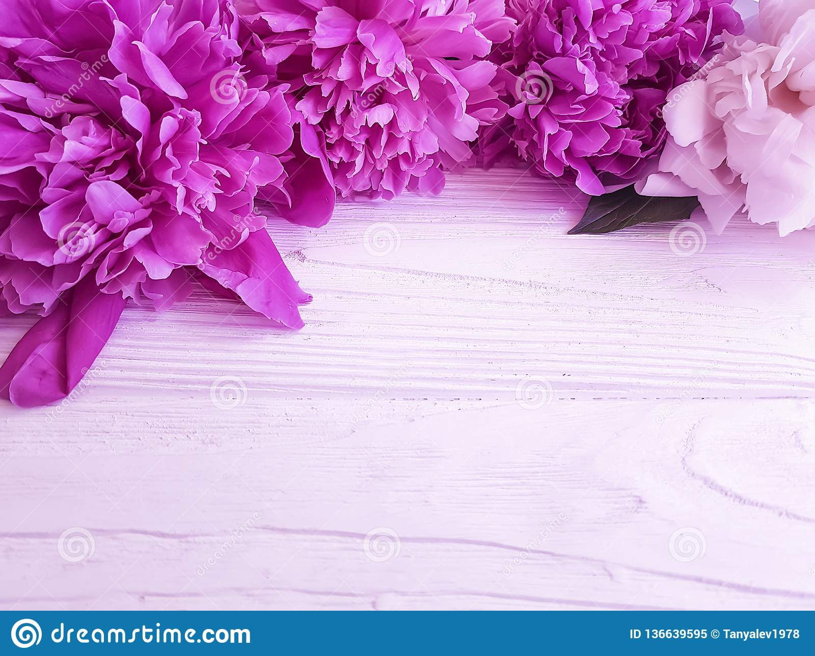 61342d5c458 Beautiful blooming peony wooden background elegance bouquet greeting  vintage summer