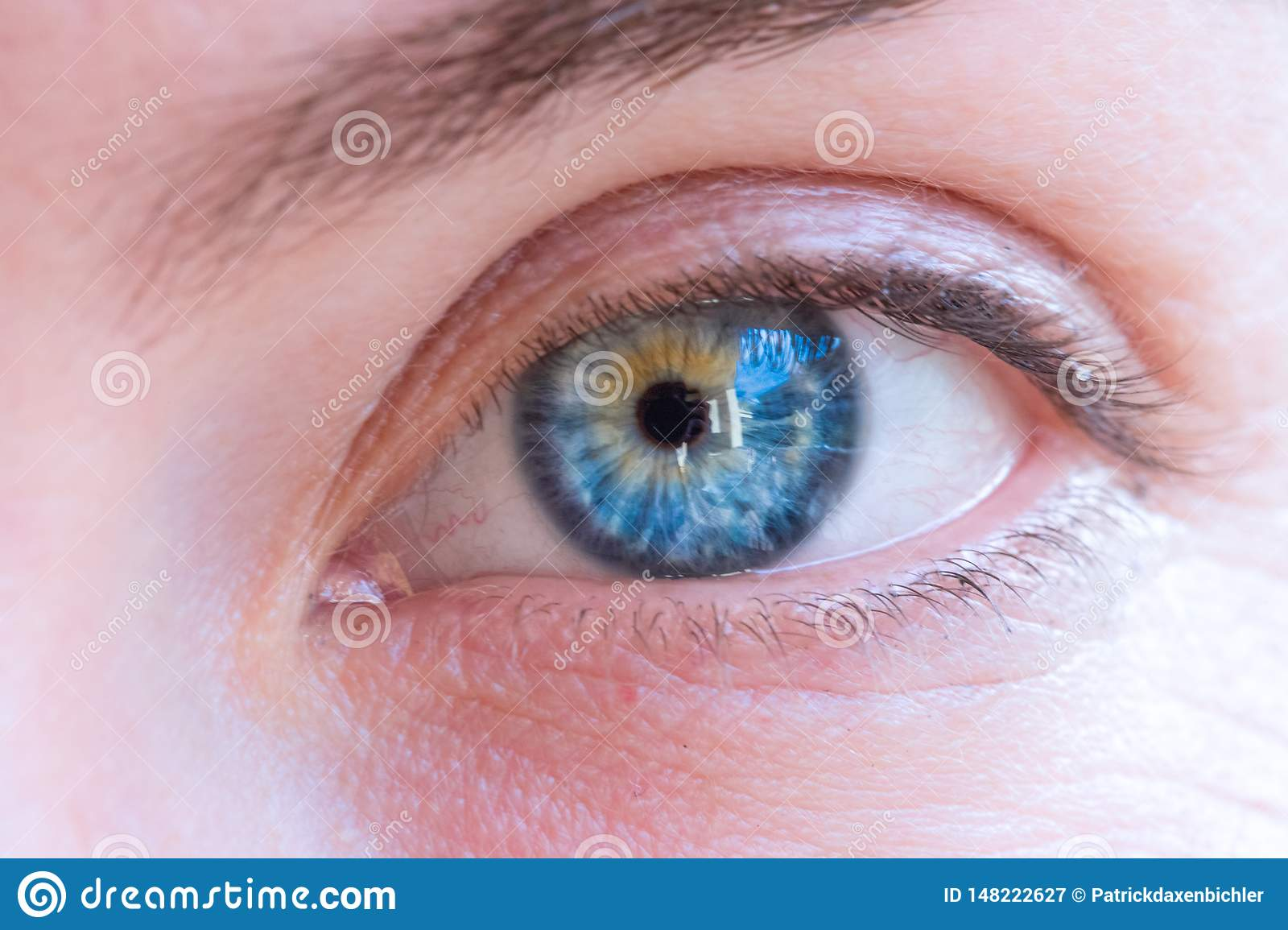Beautiful Blue Eyes Of A Young Girl Stock Image Image Of Eyebrow Female 148222627