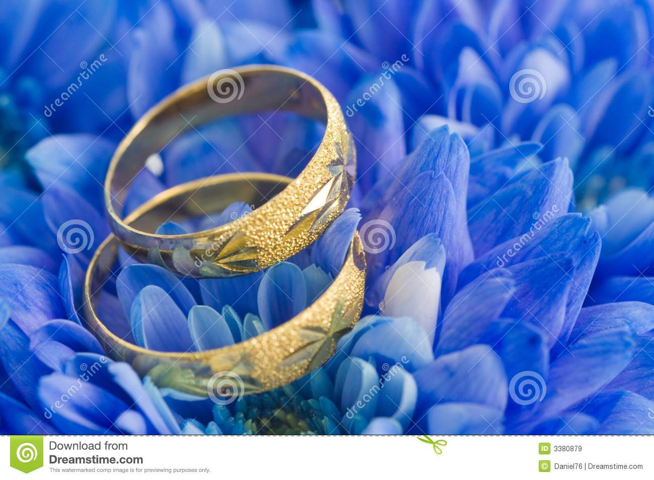 Beautiful Blue Flowers Royalty Free Stock Images  Image: 3380879