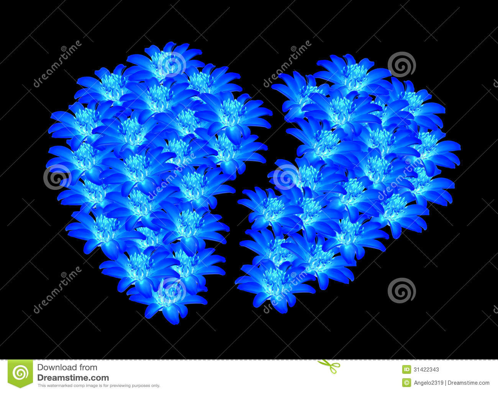 Beautiful Blue Flowers Heart Shaped Apart Stock Image Image Of