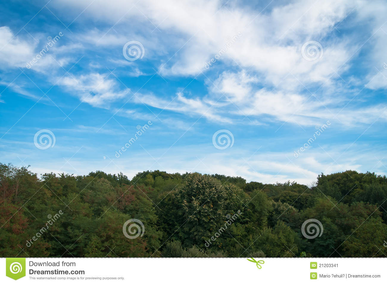 Beautiful Blue Sky And Green Forest On Horizon Stock Image ...