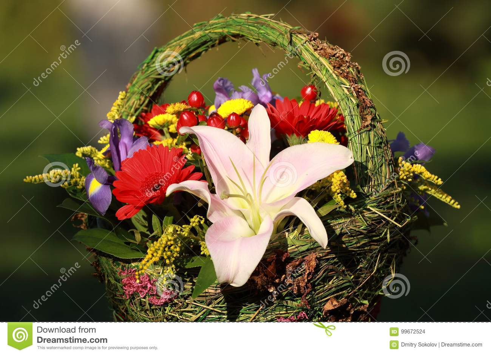 Beautiful bouquet of flowers for women stock photo image of women the most beautiful bouquet of flowers for women izmirmasajfo