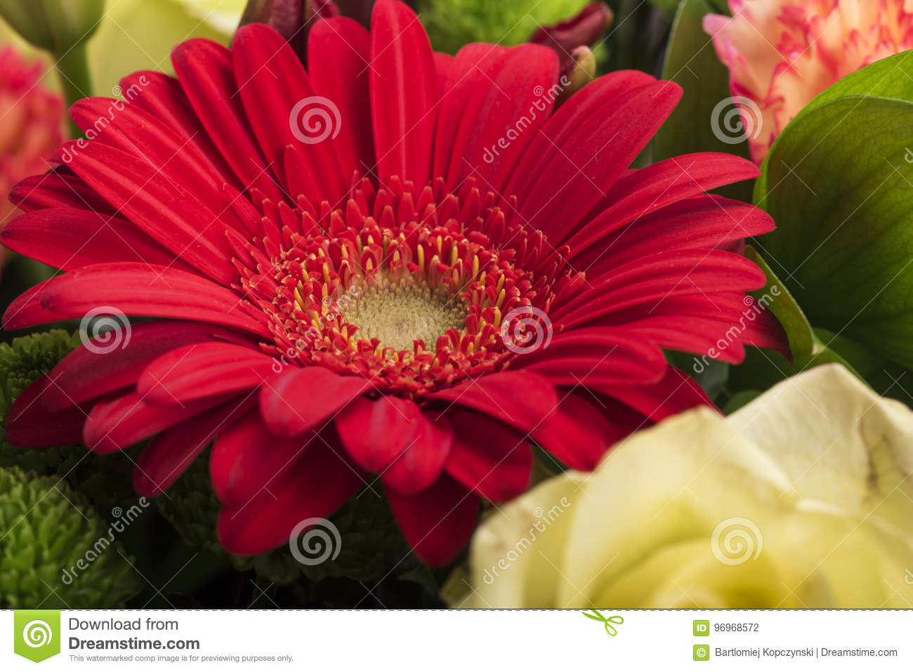 Beautiful Bouquet Of Many Colorful Flowers With Red On Top Stock ...