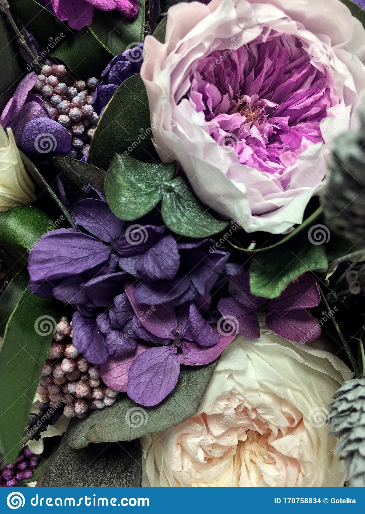 Beautiful Bouquet Of Preserved Flowers Hydrangea Eucalyptus Purple And White Peony Roses Dried Flowers Bouquet Of Spring Stock Photo Image Of Eucalyptus Love 170758834