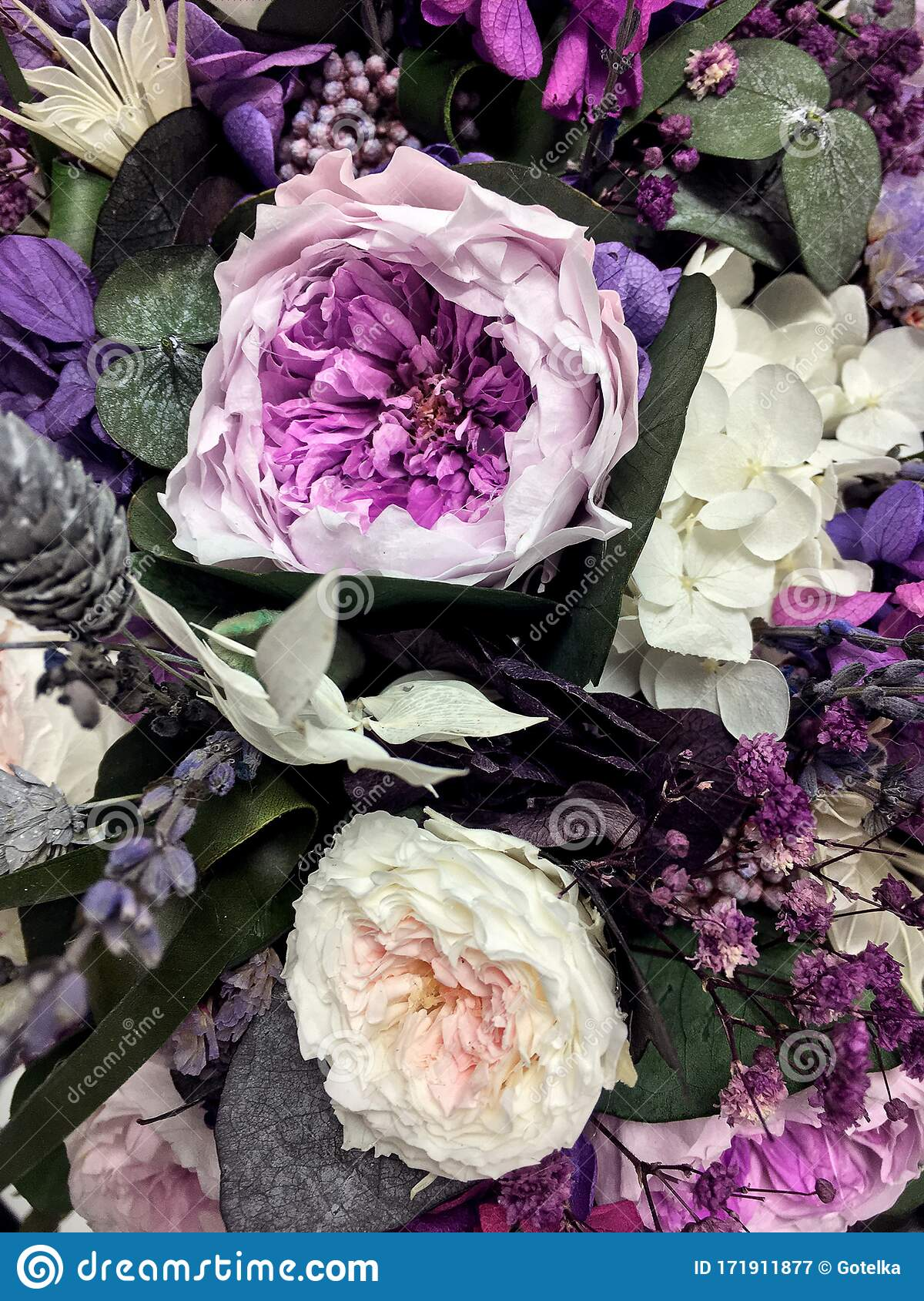 Beautiful Bouquet Of Preserved Flowers Hydrangea Eucalyptus Purple And White Peony Roses Dried Flowers Bouquet Of Spring Stock Image Image Of Exotic Design 171911877