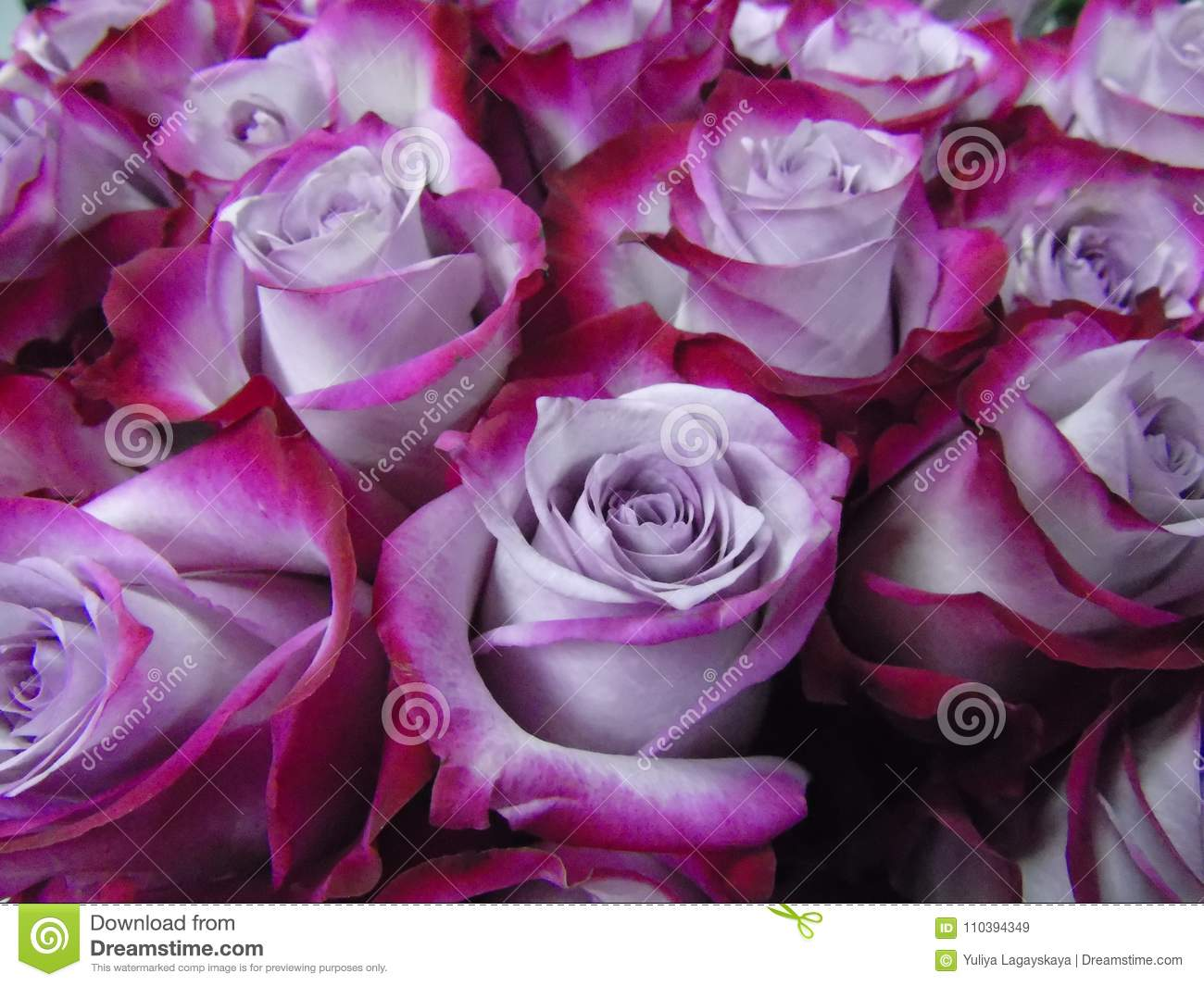 Two Tone Lavender Lily and Beauty Rose (LS1871) |Two Tone Lavender Roses