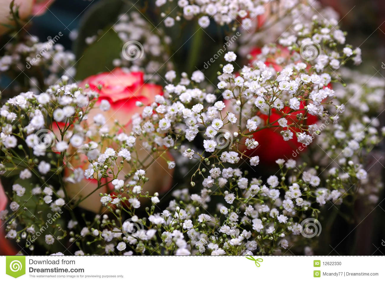 Beautiful Bouquet From White Flowers And Roses Stock Photo - Image ...