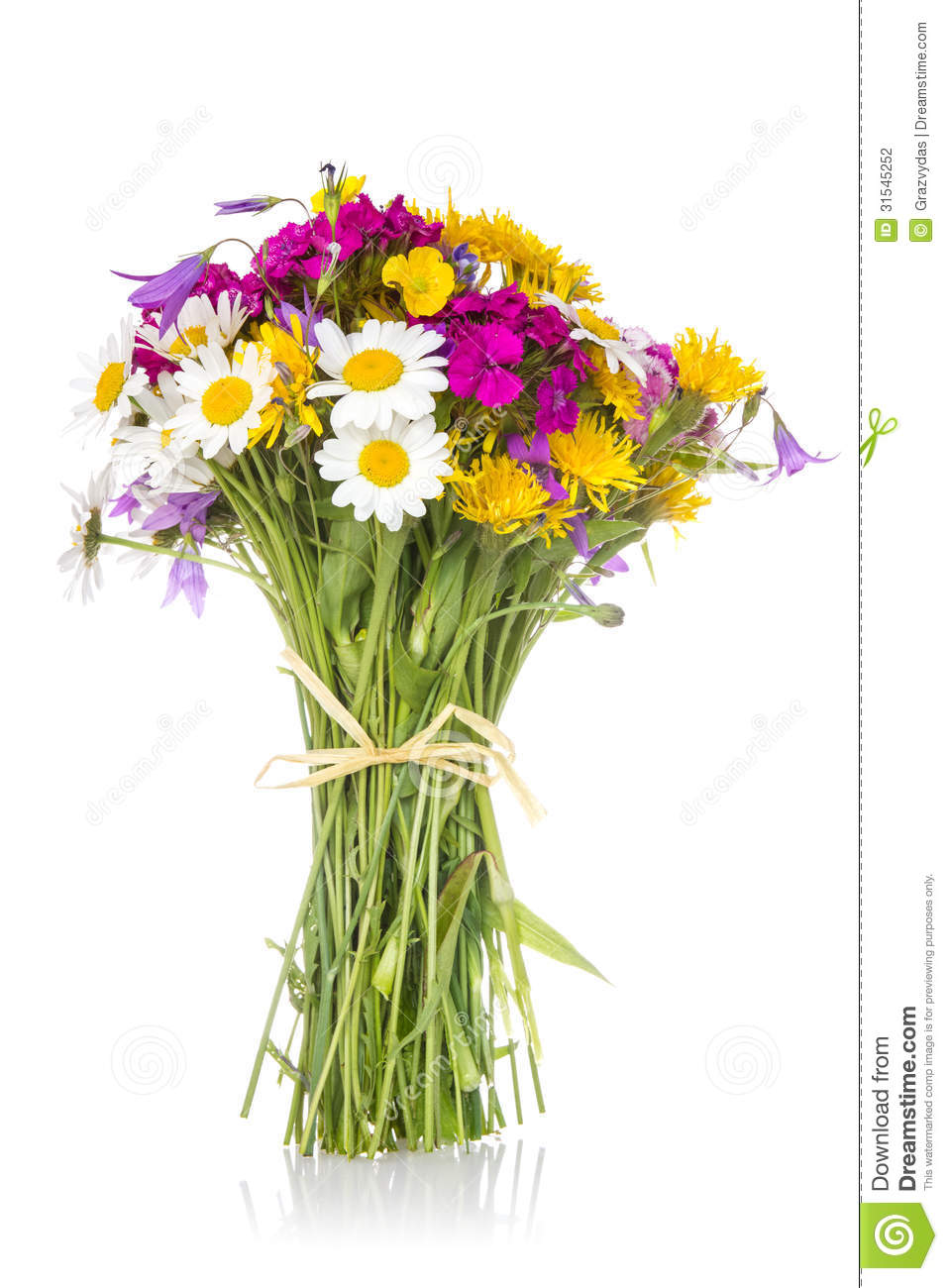Beautiful Bouquet Of Wildflowers Stock Photo - Image of flower ...