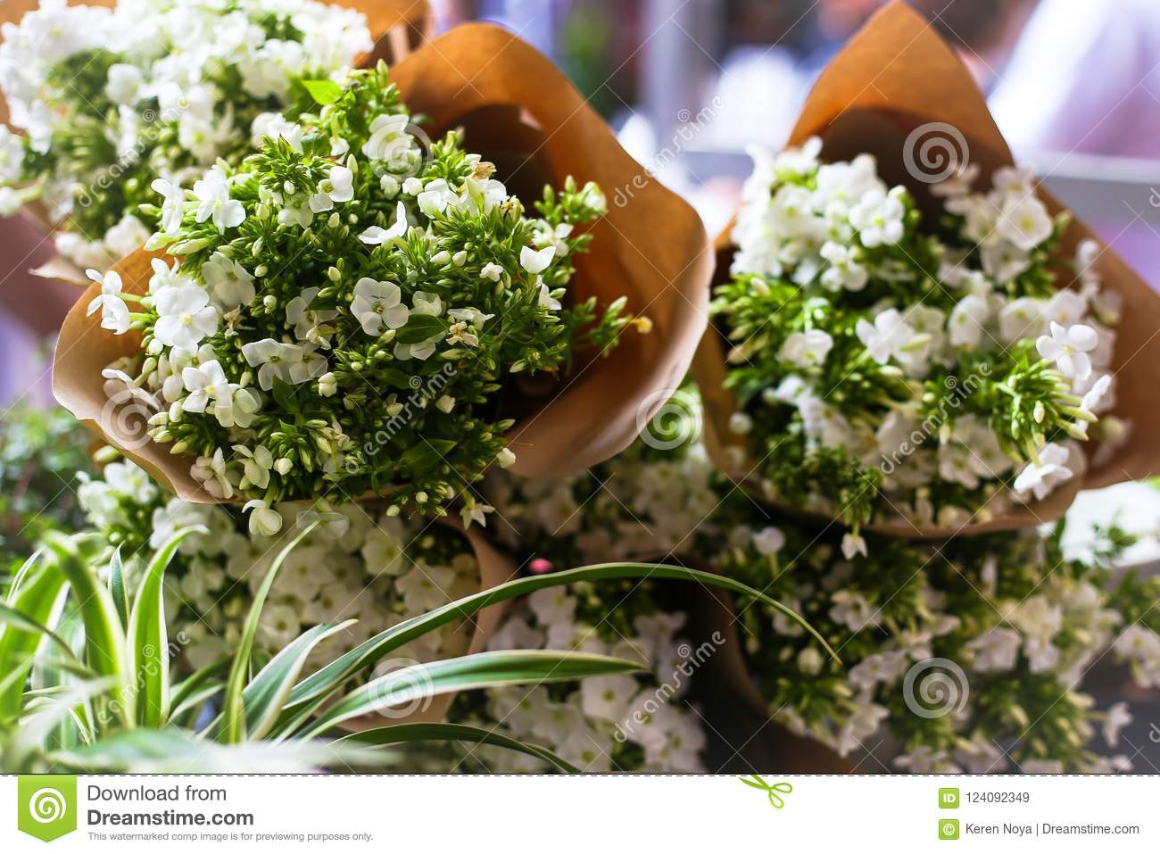 Beautiful bouquets consisting of tiny white flowers stock image download beautiful bouquets consisting of tiny white flowers stock image image of background flowers mightylinksfo