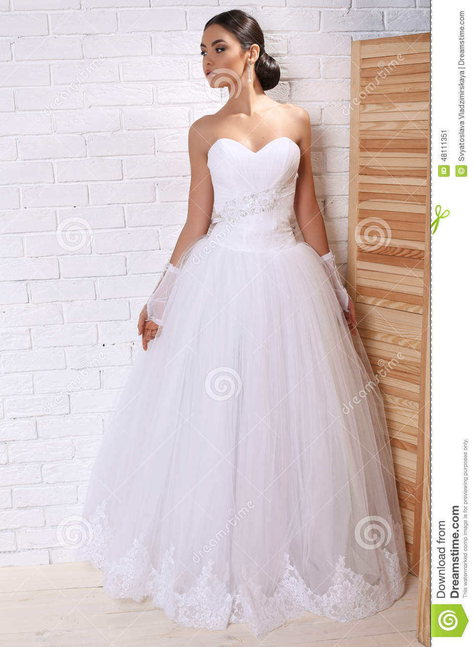 Beautiful Bride With Dark Hair In Elegant Wedding Dress With ...