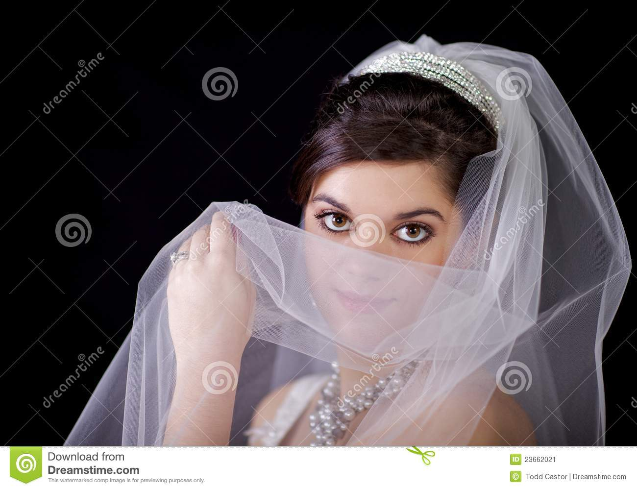 Beautiful Bride Looking Over Her Veil Against Blac